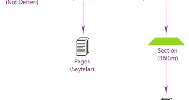 OneNote Not Defteri Diyagramı